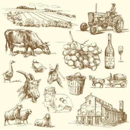 chèvres: main originale dessin�e collecte ferme