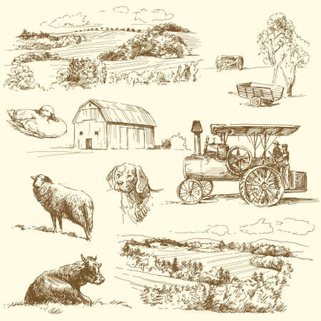 original hand drawn farm collection Stock Vector - 14625395