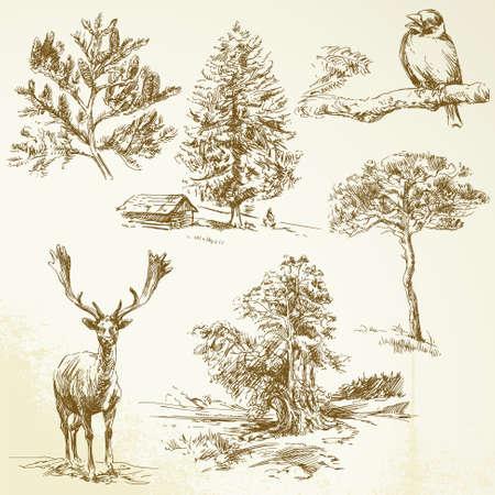 森林、動物、自然保護区 - 手描き下ろしコレクション  イラスト・ベクター素材