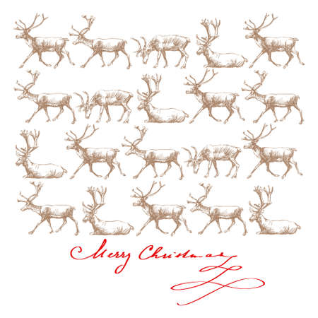 christmas rendeers - hand drawn card Vector