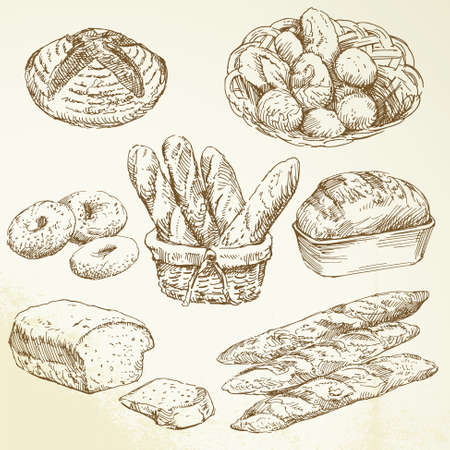 bread rolls: bakery - hand drawn collection  Illustration