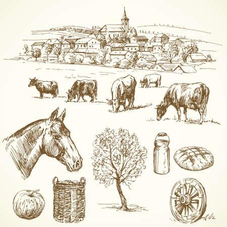 vaca: granja - dibujado a mano colecci�n Vectores