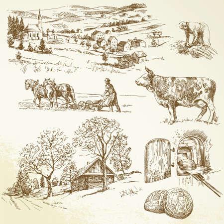 granja caricatura: paisaje rural, la agricultura, la cría de