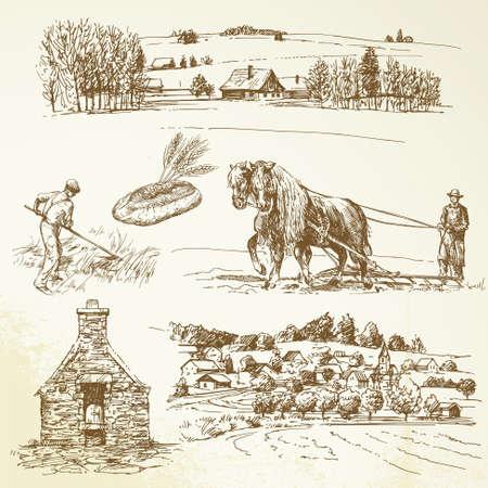 produits céréaliers: paysage rural, de l'agriculture, village