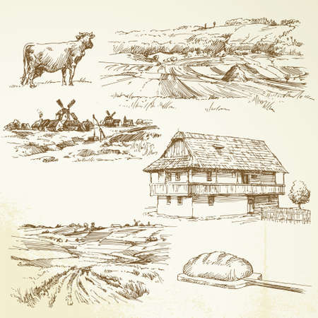 farming, rural landscape Illustration