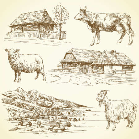 sheep farm: hand drawn set - rural landscape, village, farm animals