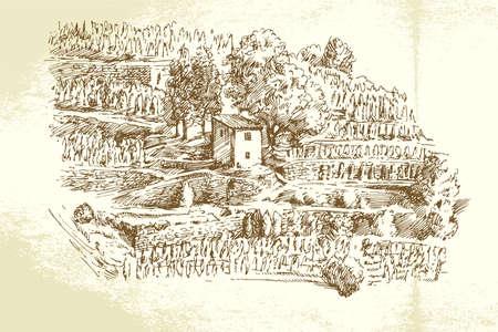 Hand drawn vineyard Ilustrace
