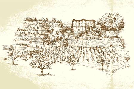 hand getekende wijngaard