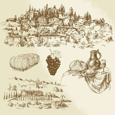 tuscany landscape: Italian rural landscape - vineyard - hand drawn illustration