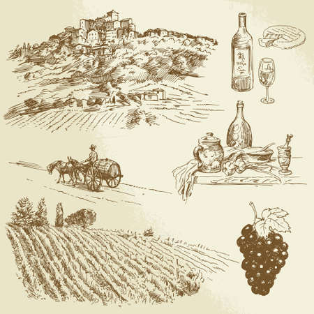 grapes wine: italian landscape, vineyard - hand drawn illustration