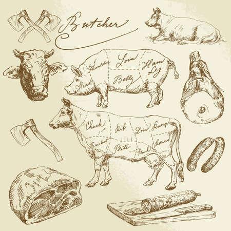 돼지 고기와 쇠고기 인하 - 손으로 그린 컬렉션 일러스트