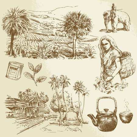 agriculture india: tea plantations - hand drawn set