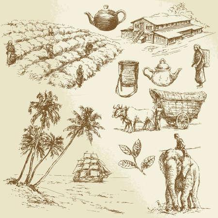 tea plantations - hand drawn set Banco de Imagens - 24058234