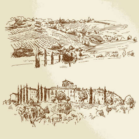 vineyard, romantic landscape - hand drawn illustration