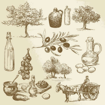 olive tree: harvest and olive product - hand drawn collection  Illustration