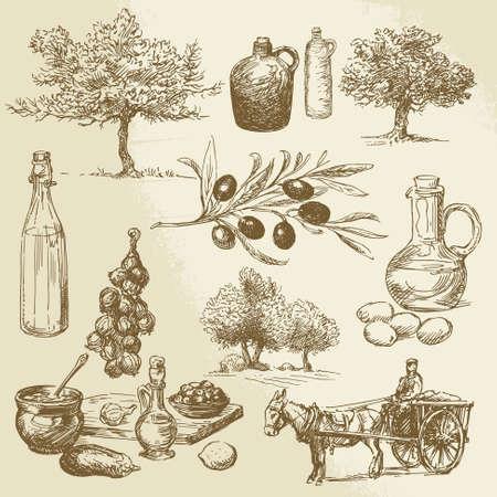 olivo arbol: la cosecha de oliva y productos - colección de dibujado a mano