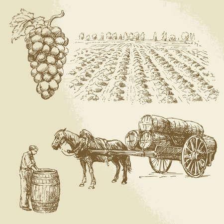 포도, 수확, 농장 - 손으로 그린 컬렉션