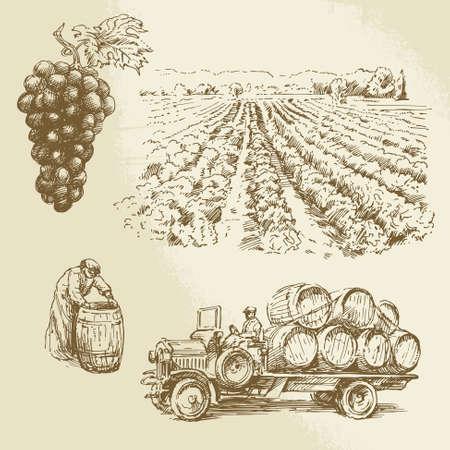 uvas: viñedo, cosecha, granja - colección de dibujado a mano