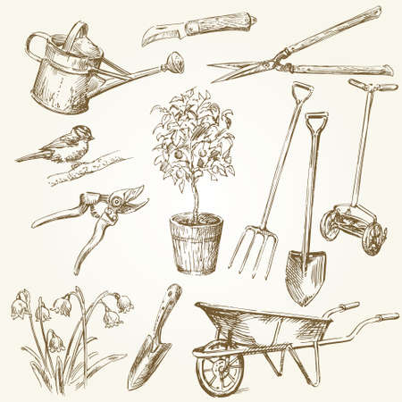 secateurs: gardening tools Illustration