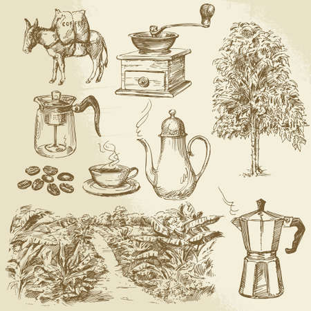 arbol de cafe: coffee collection - dibujado a mano ilustración vectorial