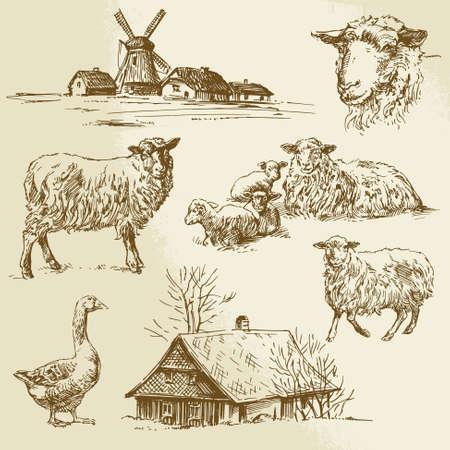 обращается: сельский пейзаж, сельскохозяйственных животных - рисованной иллюстрации