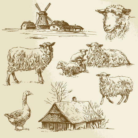 rural landscapes: rural landscape, farm animal - hand drawn illustration