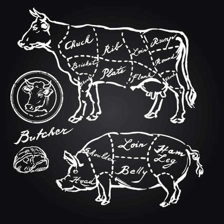 돼지 고기와 쇠고기 인하 - 손으로 그린 세트 일러스트