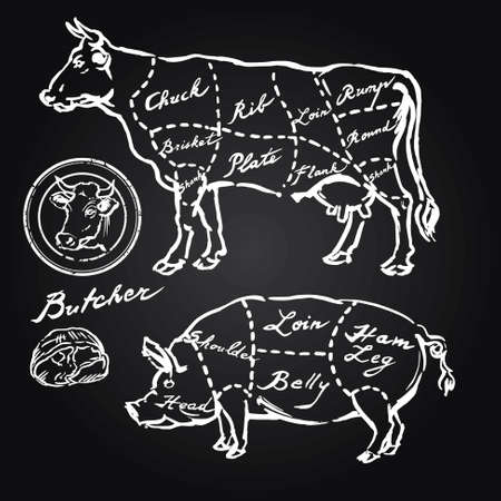 steaks: pork and beef cuts - hand drawn set Illustration