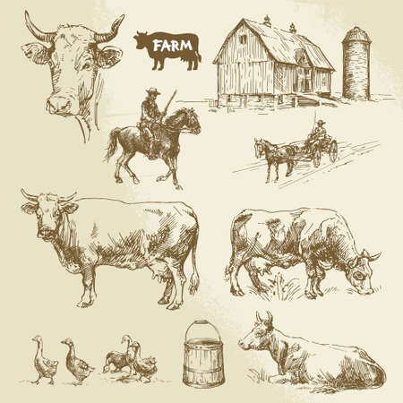 milk pail: hand drawn collection