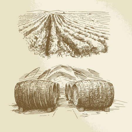 grapes wine: barrels, vineyard, harvest, farm - hand drawn collection