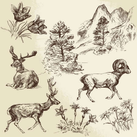 wild nature, forest and mountains - hand drawn illustration Vettoriali