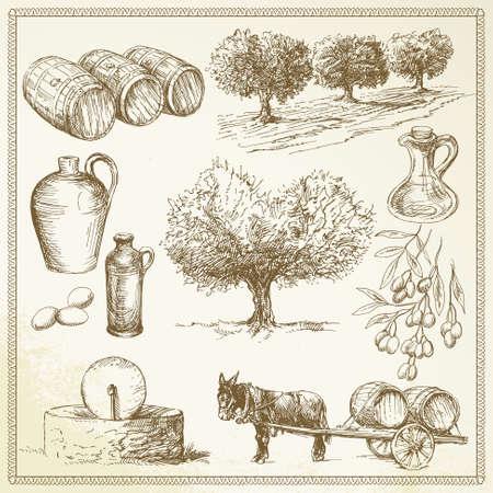 olivo arbol: oliva - dibujado a mano conjunto Vectores