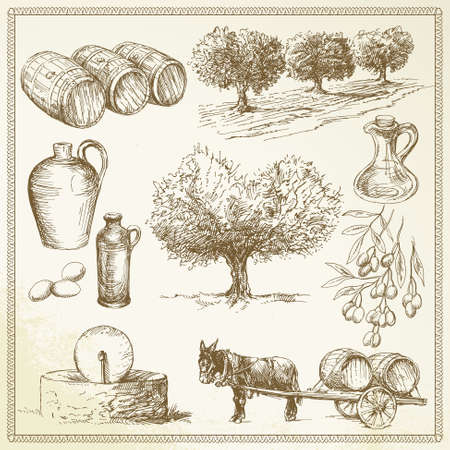 olive trees: olive - hand drawn set