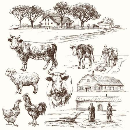 oiseau dessin: ferme, vache, l'agriculture - collection dessin�e � la main