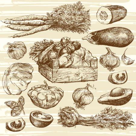 verduras: hortalizas - colecci�n de dibujado a mano Vectores