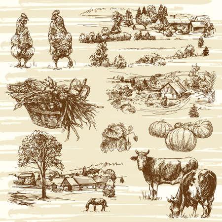 horse drawn: farm, harvest, rural landscape - hand drawn set