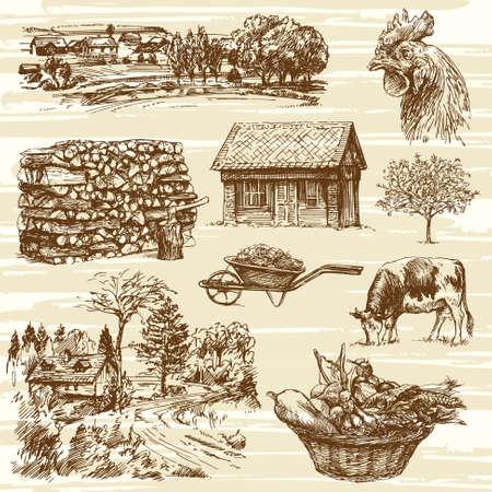 corbeille de fruits: ferme, récolte, paysage rural - dessiné à la main ensemble