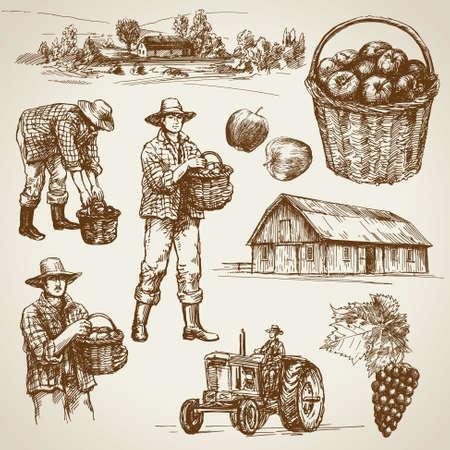 granja: Tierras de cultivo, la cosecha en la granja