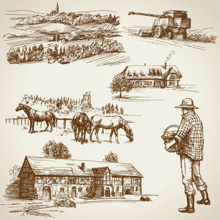Landbouwgrond, oogst op de boerderij Stock Illustratie