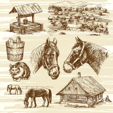 rural wooden bucket: Farm and horses - hand drawn set