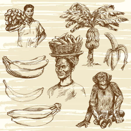 monkey in a tree: Bananas set, hand drawn illustration Illustration