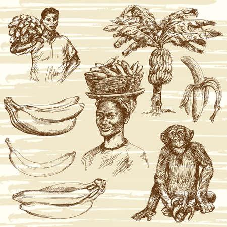 platano maduro: Los pl�tanos conjunto, ilustraci�n dibujados a mano
