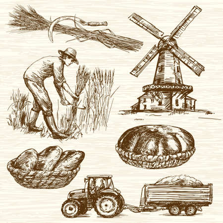 harvesting: Farmer harvesting wheat. Hand drawn collection.