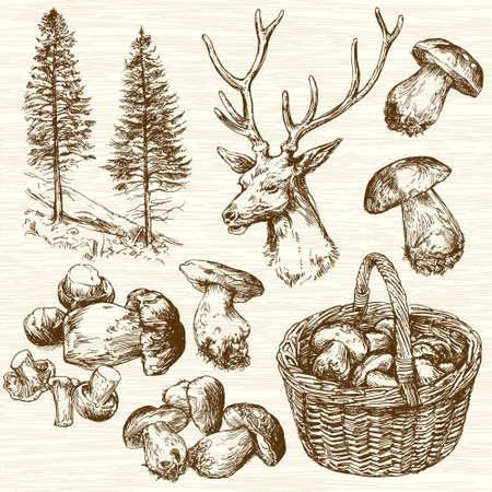 Korb der Pilze im Wald. Hand gezeichnet gesetzt.