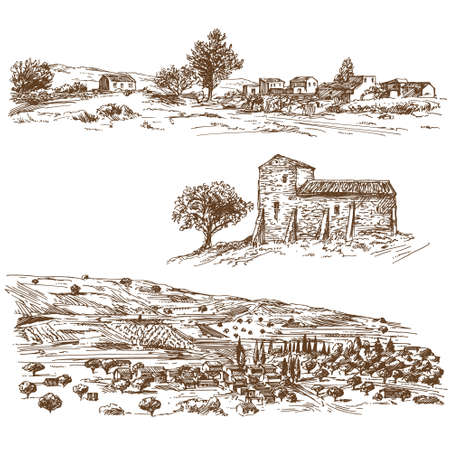 Rural landscape with country house and vineyard.