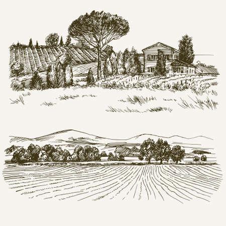 Ländliche Landschaft mit Landhaus und Weinberg.