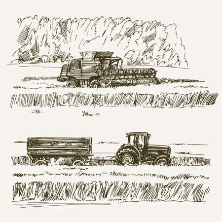 champ de mais: Terres agricoles, la récolte à la ferme Illustration