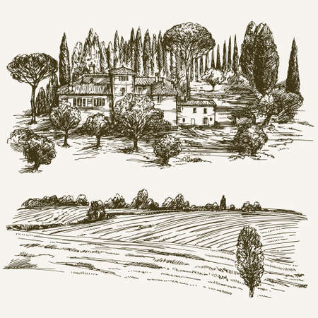 vineyards: Rural landscape with country house.
