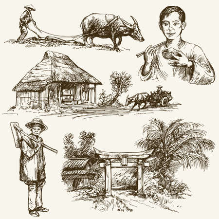 rice harvest: Asian farmers working on Field. Hand drawn illustration. Rice harvest.