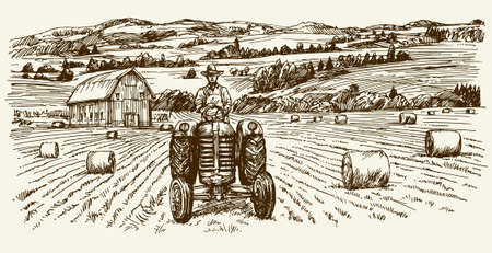 hay bales: Tractor collecting haystack in the field. Hand drawn vector illustration.